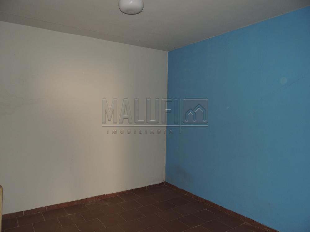 Alugar Casas / Padrão em Olímpia apenas R$ 1.600,00 - Foto 15