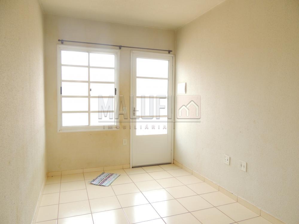 Alugar Casas / Padrão em Olímpia apenas R$ 650,00 - Foto 1
