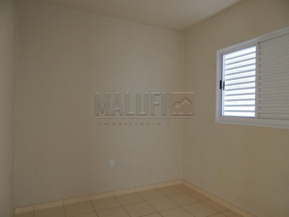 Alugar Casas / Padrão em Olímpia apenas R$ 650,00 - Foto 3
