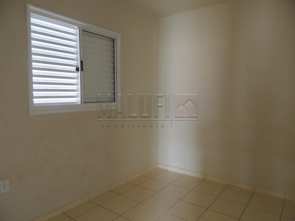 Alugar Casas / Padrão em Olímpia apenas R$ 650,00 - Foto 4