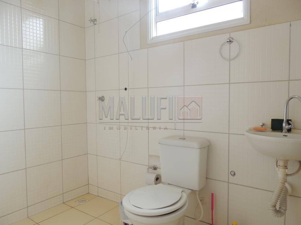Alugar Casas / Padrão em Olímpia apenas R$ 650,00 - Foto 5