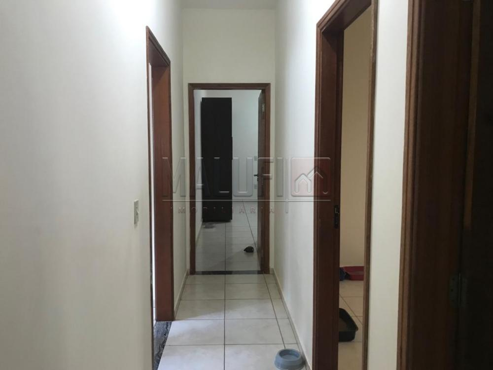 Comprar Casas / Padrão em Olímpia apenas R$ 390.000,00 - Foto 7