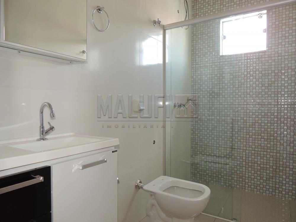 Alugar Casas / Padrão em Olímpia apenas R$ 1.200,00 - Foto 8