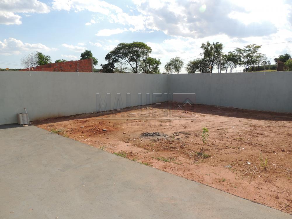 Alugar Casas / Padrão em Olímpia apenas R$ 1.200,00 - Foto 13