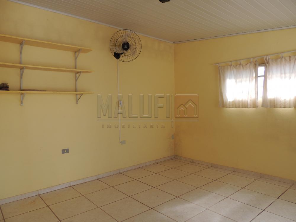 Alugar Casas / Mobiliadas em Olímpia apenas R$ 3.000,00 - Foto 13