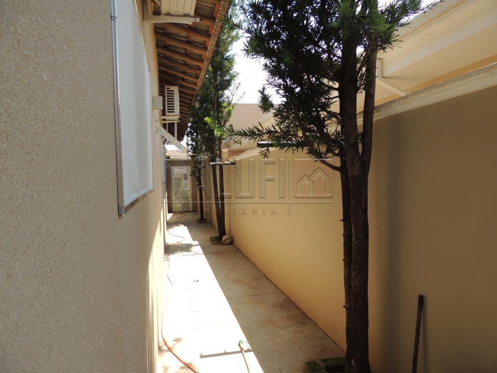 Alugar Casas / Condomínio em Olímpia apenas R$ 3.500,00 - Foto 19