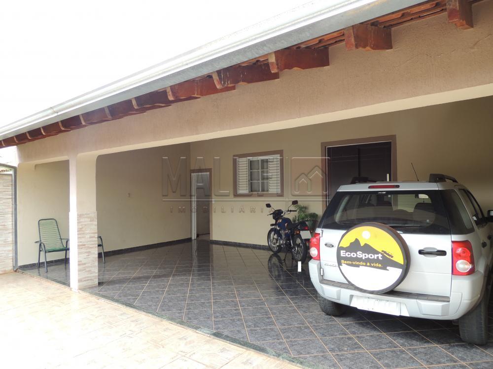 Comprar Casas / Padrão em Olímpia apenas R$ 385.000,00 - Foto 3
