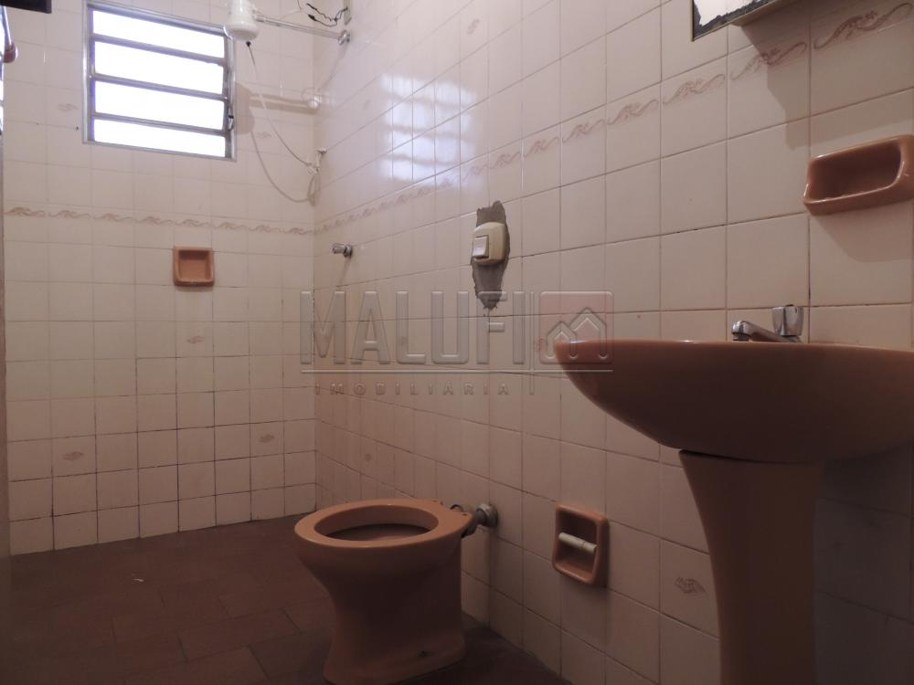 Alugar Casas / Padrão em Olímpia apenas R$ 900,00 - Foto 7