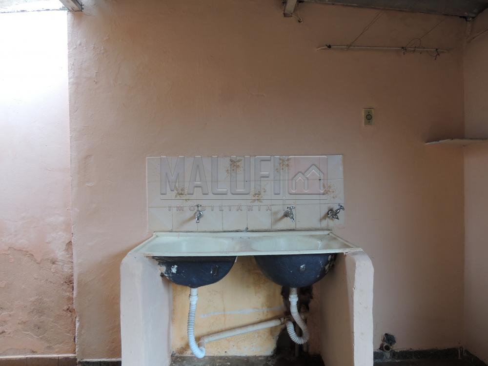 Alugar Casas / Padrão em Olímpia apenas R$ 900,00 - Foto 9