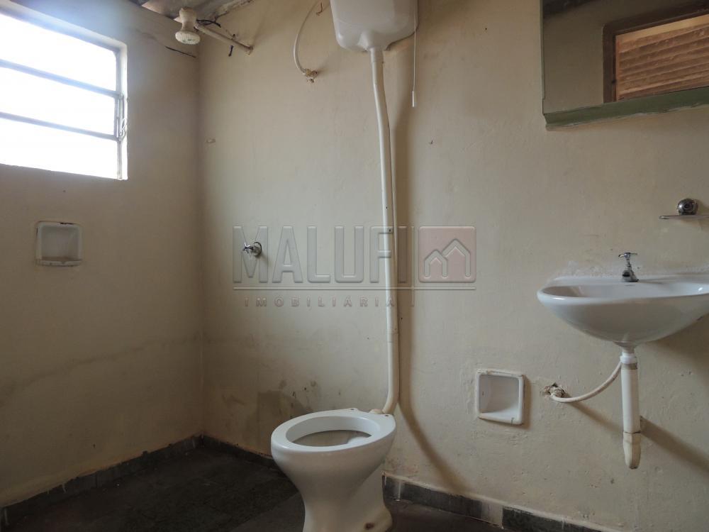 Alugar Casas / Padrão em Olímpia apenas R$ 900,00 - Foto 11