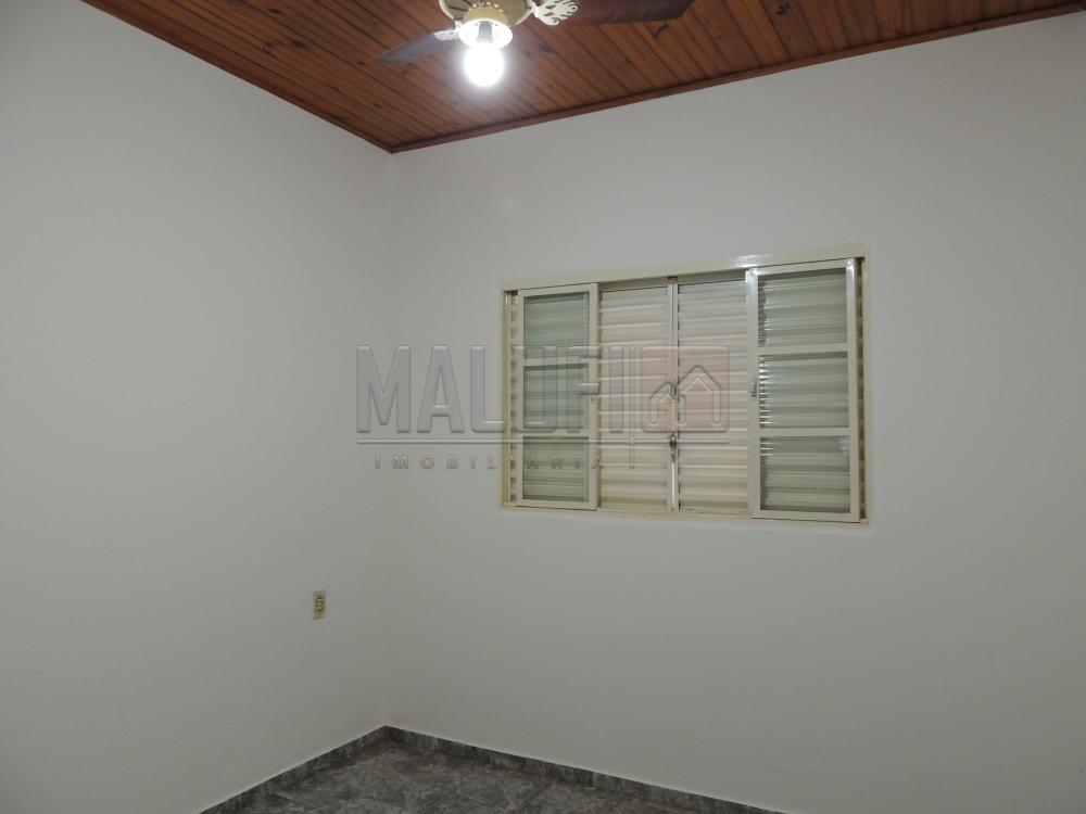 Alugar Casas / Padrão em Olímpia apenas R$ 790,00 - Foto 2