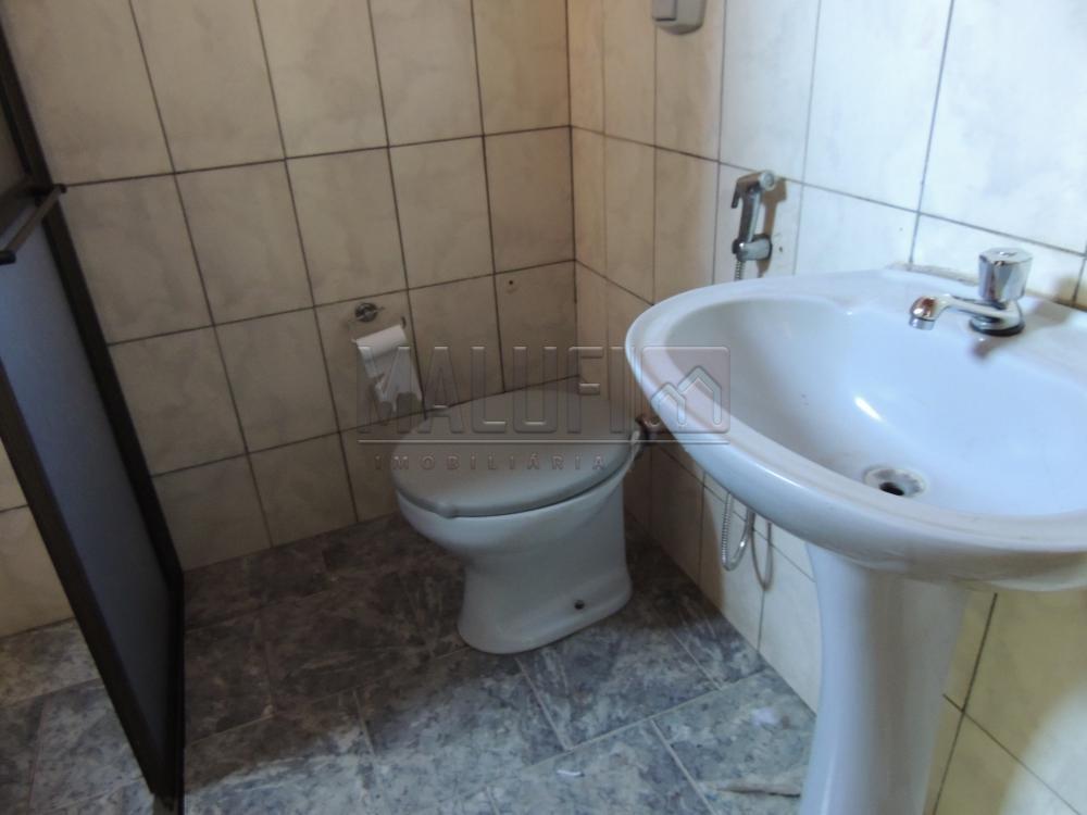 Alugar Casas / Padrão em Olímpia apenas R$ 790,00 - Foto 3