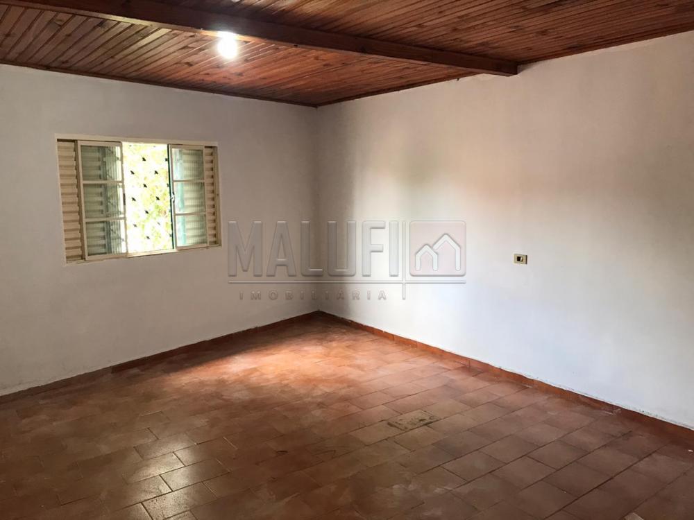 Alugar Casas / Padrão em Olímpia apenas R$ 600,00 - Foto 7