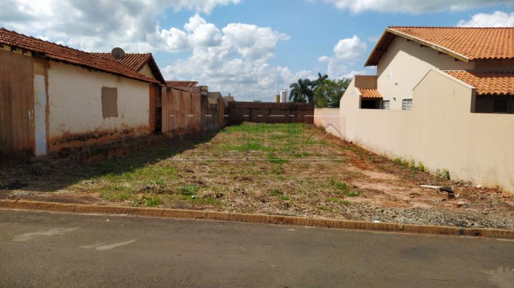 Comprar Terrenos / Padrão em Olímpia apenas R$ 100.000,00 - Foto 1