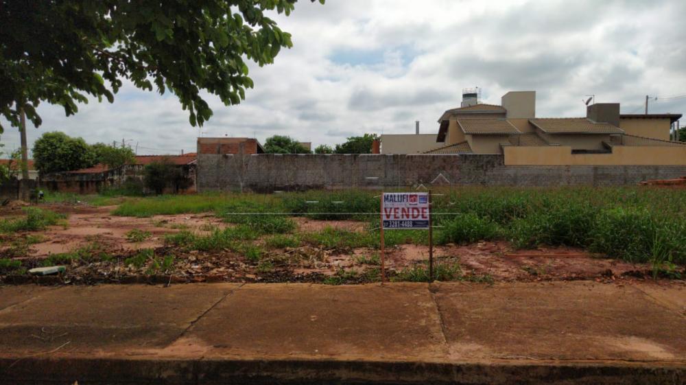 Comprar Terrenos / Padrão em Olímpia apenas R$ 95.000,00 - Foto 1