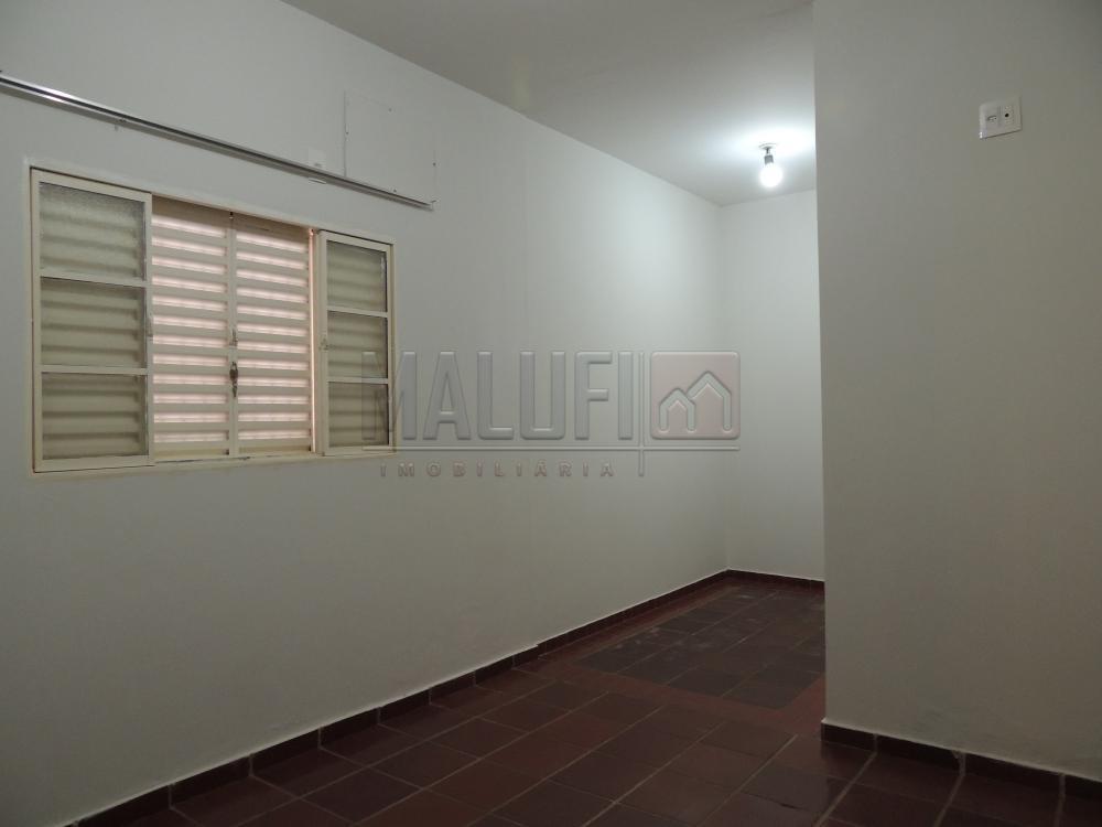 Alugar Casas / Padrão em Olímpia apenas R$ 1.600,00 - Foto 6