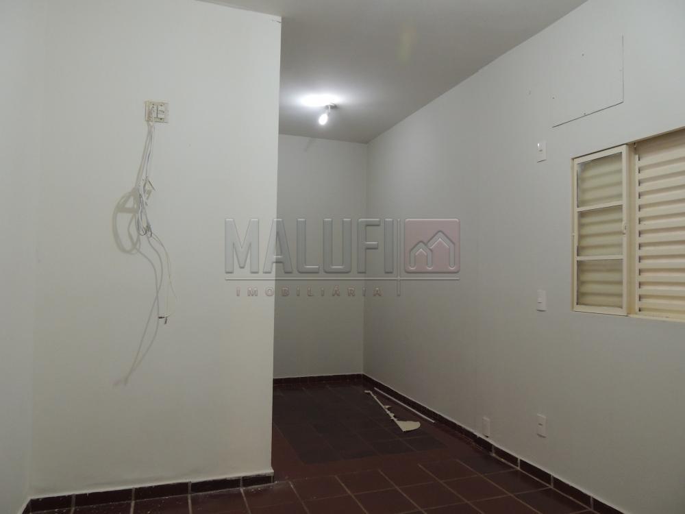 Alugar Casas / Padrão em Olímpia apenas R$ 1.600,00 - Foto 8