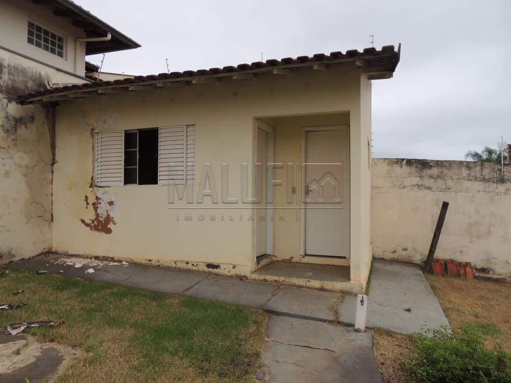 Alugar Casas / Padrão em Olímpia apenas R$ 1.600,00 - Foto 13
