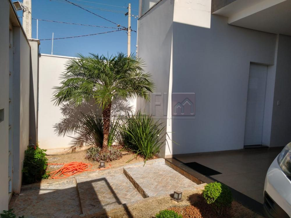 Olimpia Casa Venda R$450.000,00 3 Dormitorios 1 Suite Area do terreno 250.00m2 Area construida 220.00m2