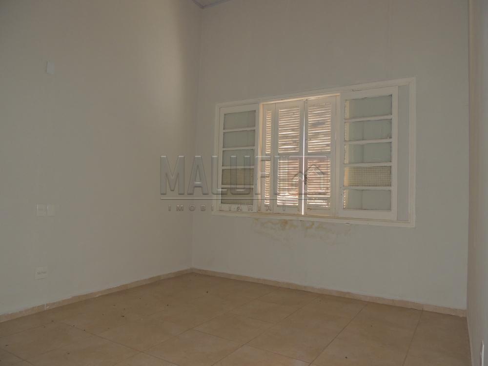 Alugar Casas / Comercial em Olímpia R$ 3.000,00 - Foto 7