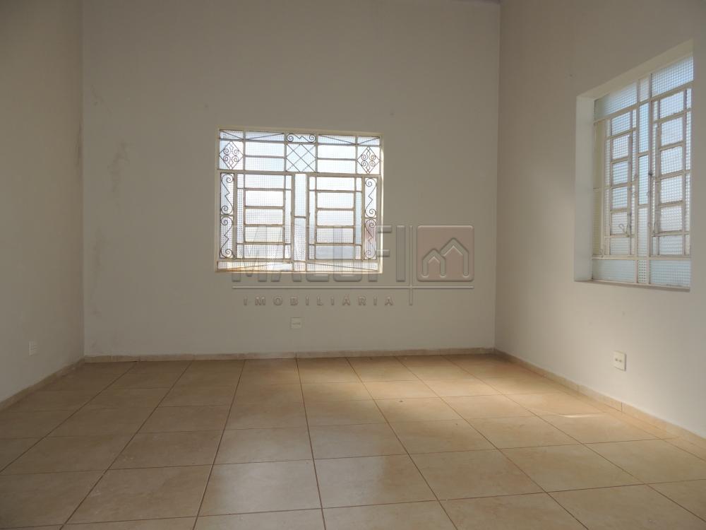 Alugar Casas / Comercial em Olímpia R$ 3.000,00 - Foto 4