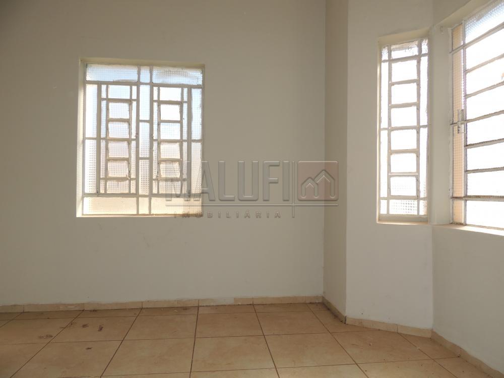 Alugar Casas / Comercial em Olímpia R$ 3.000,00 - Foto 3
