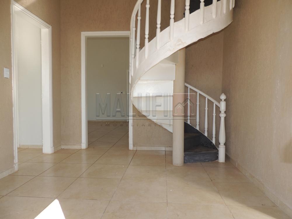Alugar Casas / Comercial em Olímpia R$ 3.000,00 - Foto 2