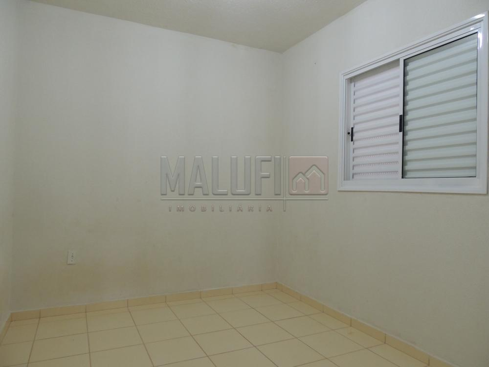 Alugar Casas / Padrão em Olímpia apenas R$ 600,00 - Foto 4