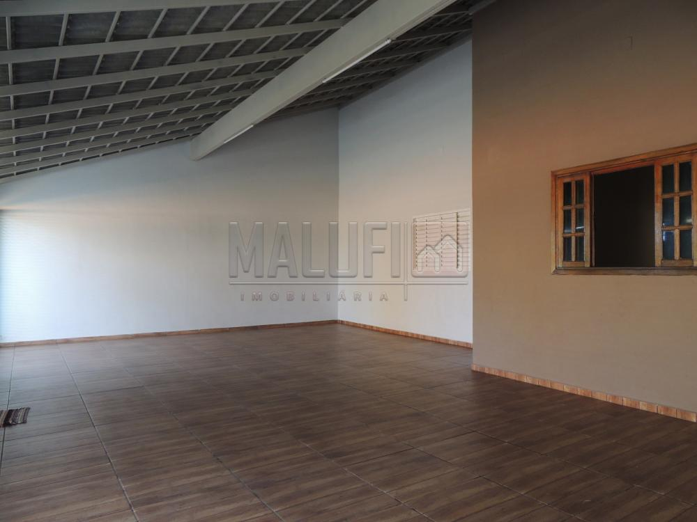 Alugar Casas / Padrão em Olímpia apenas R$ 2.000,00 - Foto 1
