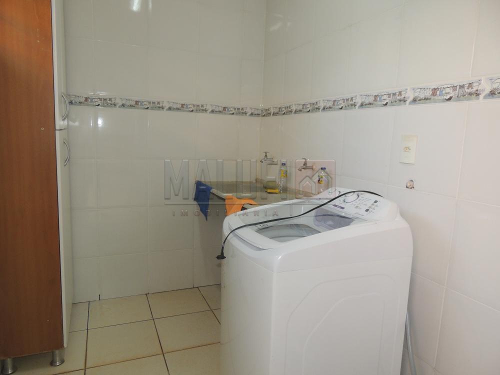 Alugar Casas / Padrão em Olímpia R$ 1.800,00 - Foto 13