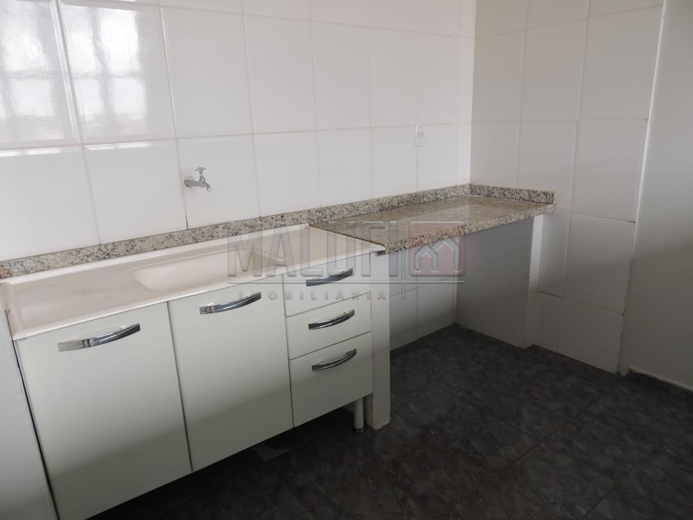 Alugar Casas / Padrão em olimpia apenas R$ 600,00 - Foto 4