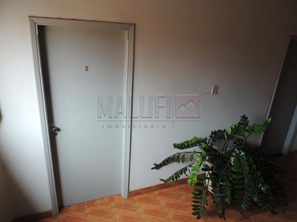Alugar Casas / Padrão em olimpia apenas R$ 600,00 - Foto 3