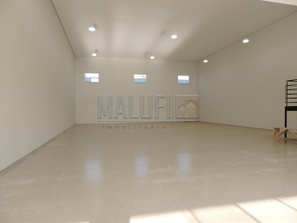 Alugar Comerciais / Barracão em Olímpia R$ 4.000,00 - Foto 4
