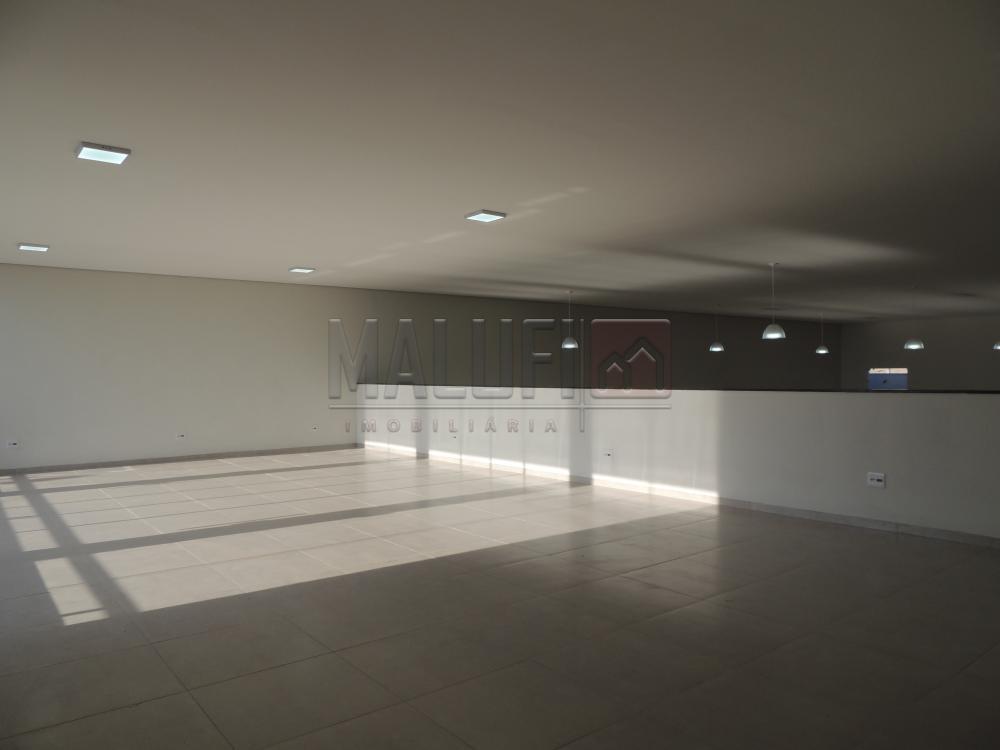 Alugar Comerciais / Barracão em Olímpia R$ 4.000,00 - Foto 15