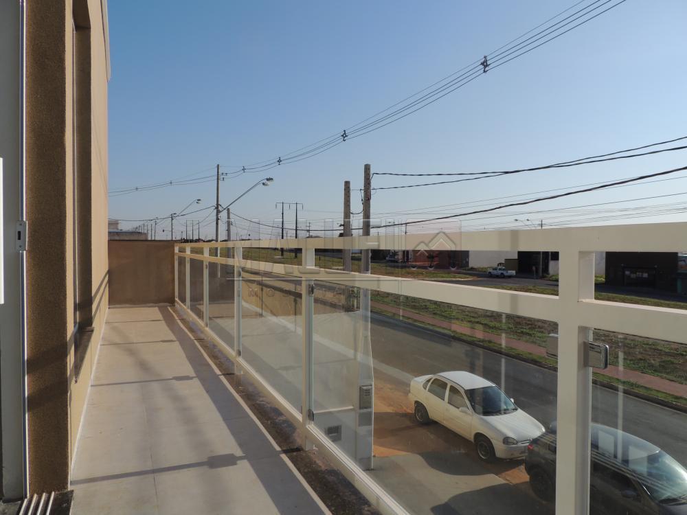 Alugar Comerciais / Barracão em Olímpia R$ 4.000,00 - Foto 1