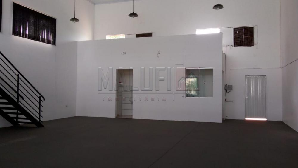 Alugar Comerciais / Galpão em Olímpia R$ 3.500,00 - Foto 6