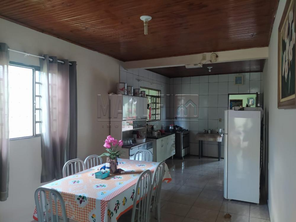 Comprar Casas / Padrão em Olímpia apenas R$ 180.000,00 - Foto 14