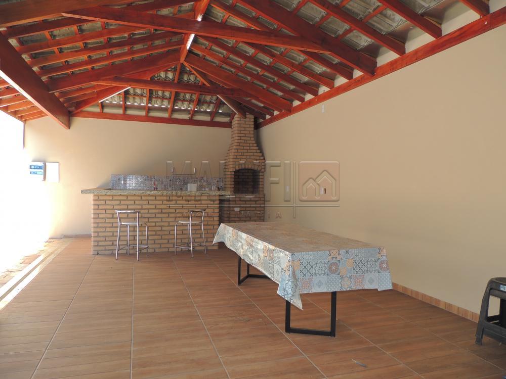 Alugar Casas / Mobiliadas em Olímpia R$ 2.800,00 - Foto 16