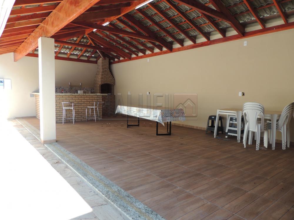 Alugar Casas / Mobiliadas em Olímpia R$ 2.800,00 - Foto 14