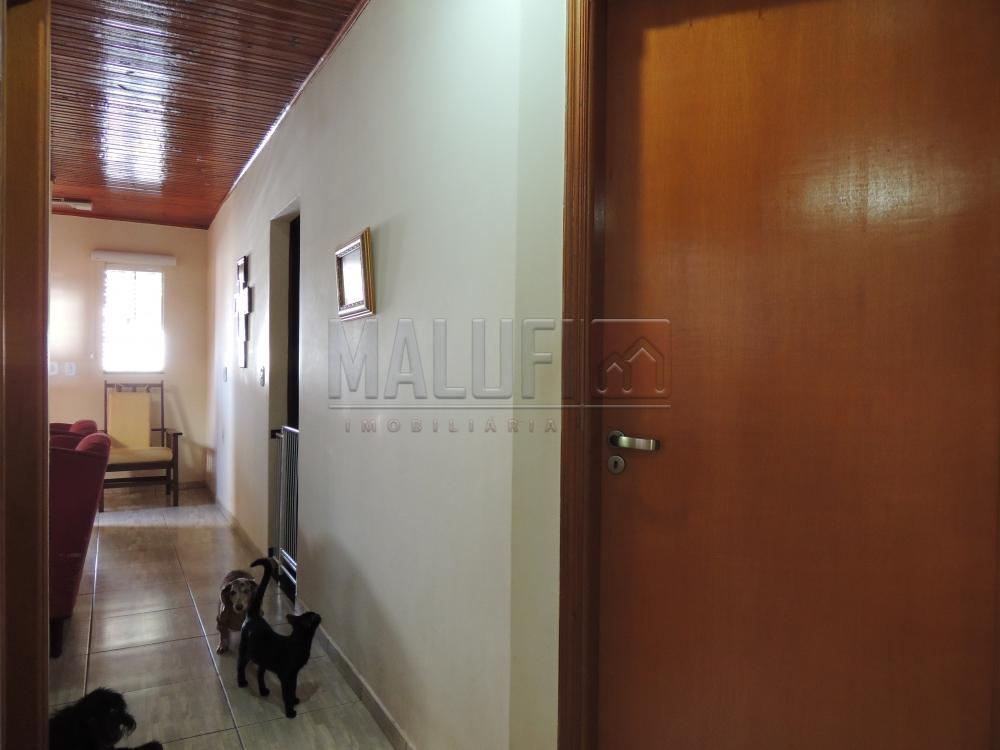 Comprar Casas / Padrão em Olímpia apenas R$ 350.000,00 - Foto 14