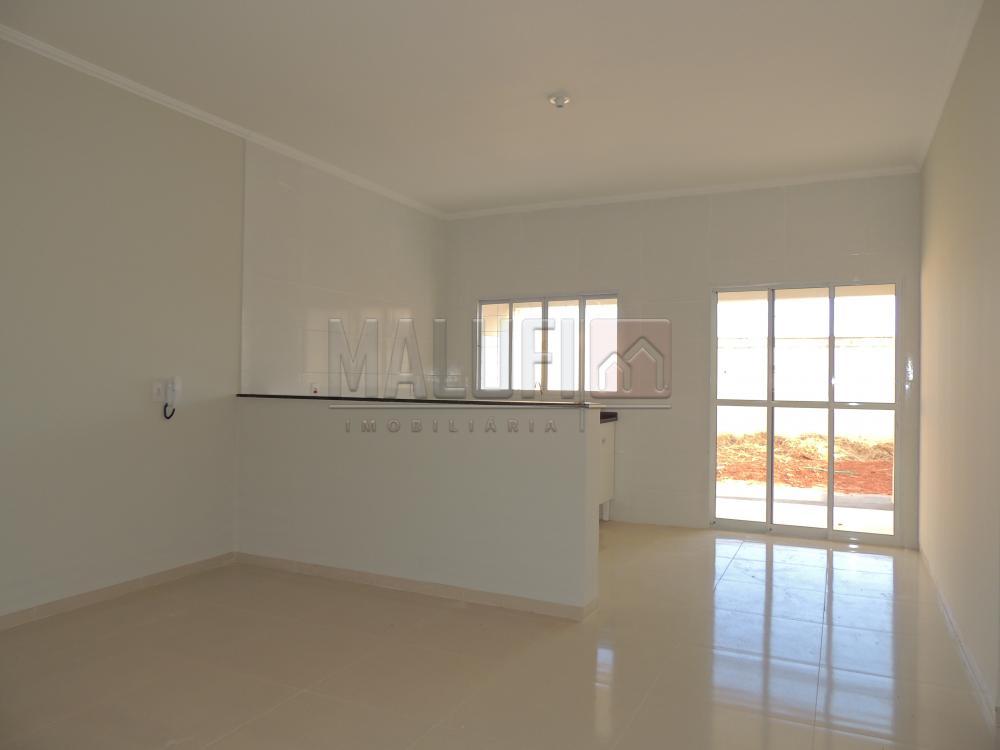 Comprar Casas / Padrão em Olímpia R$ 350.000,00 - Foto 3