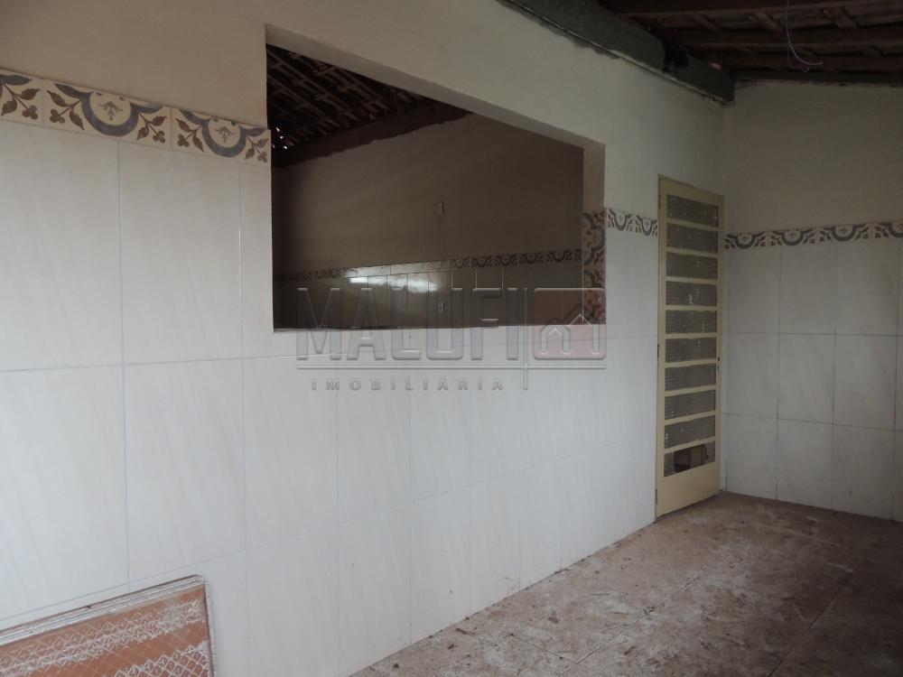 Alugar Comerciais / Ponto Comercial em Olímpia R$ 750,00 - Foto 1