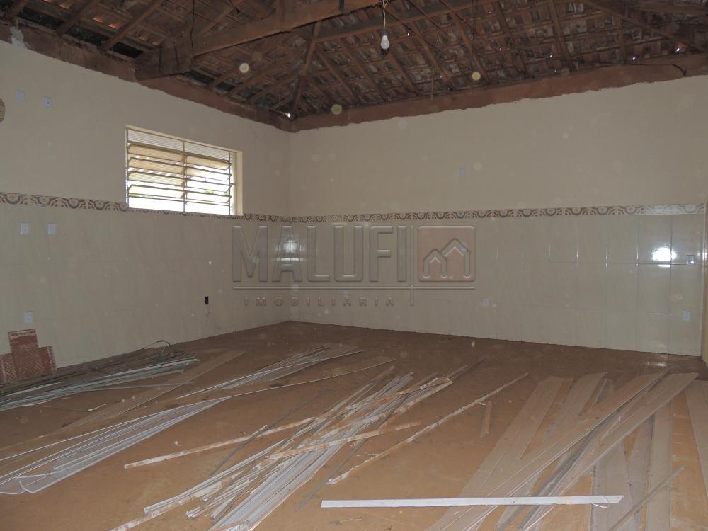 Alugar Comerciais / Ponto Comercial em Olímpia R$ 750,00 - Foto 3