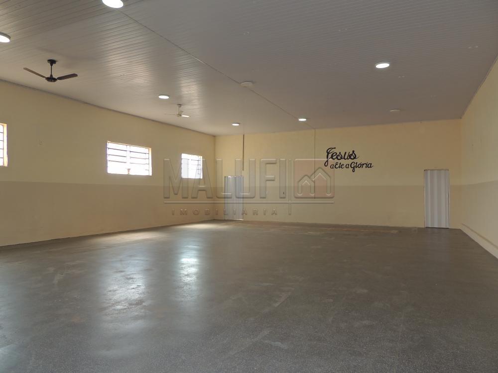 Alugar Comerciais / Salão em Olímpia R$ 3.300,00 - Foto 1
