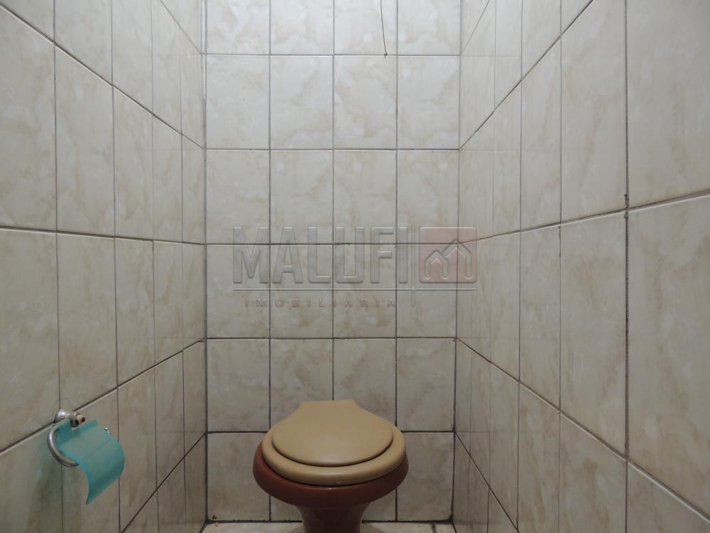 Alugar Comerciais / Salão em Olímpia R$ 3.300,00 - Foto 5