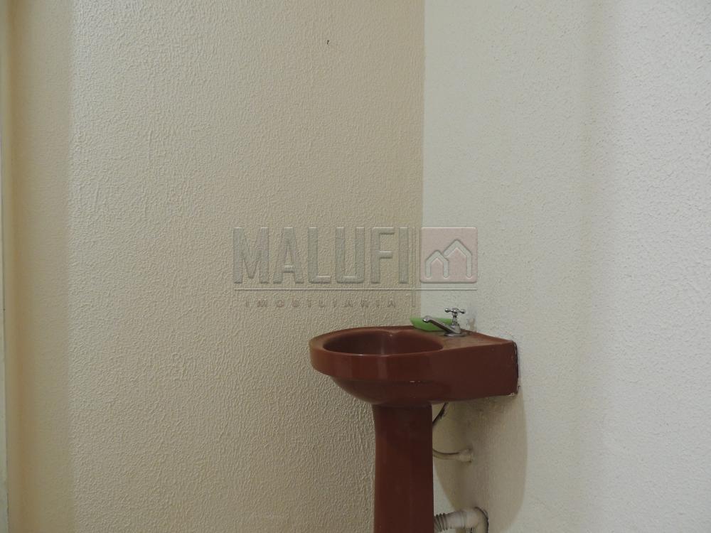 Alugar Comerciais / Salão em Olímpia R$ 3.300,00 - Foto 6