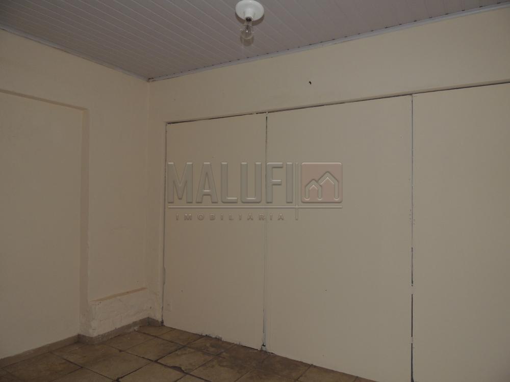 Alugar Comerciais / Salão em Olímpia R$ 3.300,00 - Foto 7