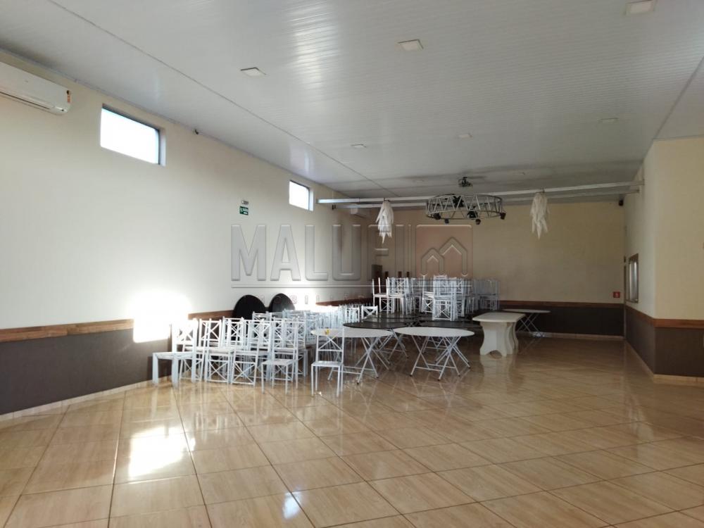 Alugar Comerciais / Barracão em Olímpia R$ 3.500,00 - Foto 3