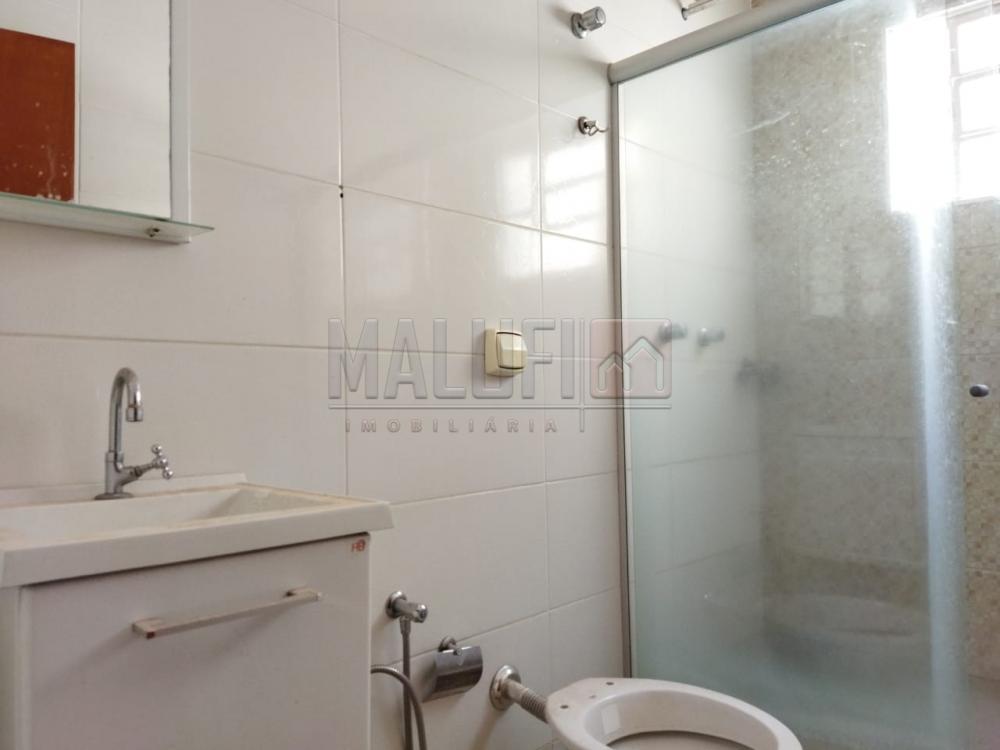 Alugar Casas / Padrão em Olímpia R$ 1.400,00 - Foto 7