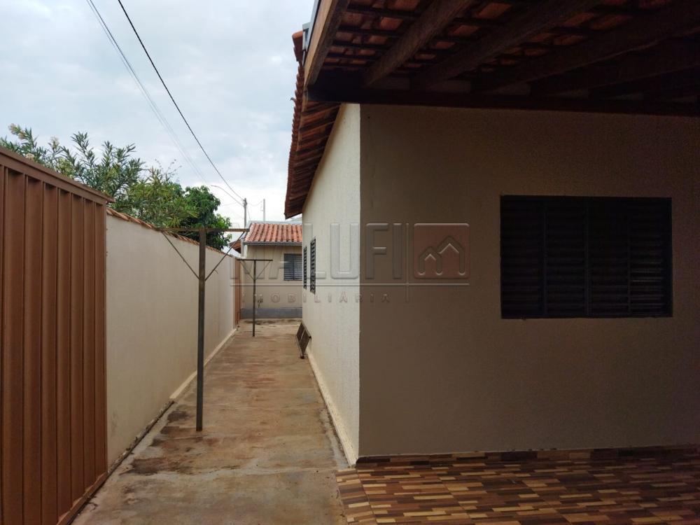 Alugar Casas / Padrão em Cajobi R$ 800,00 - Foto 2